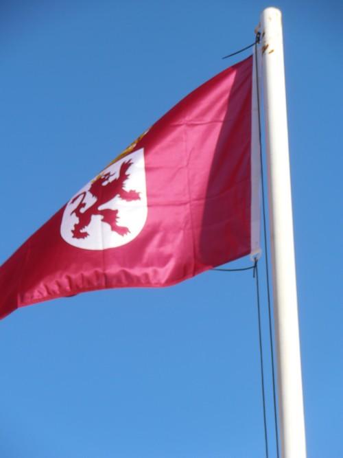 Bandera de León, España