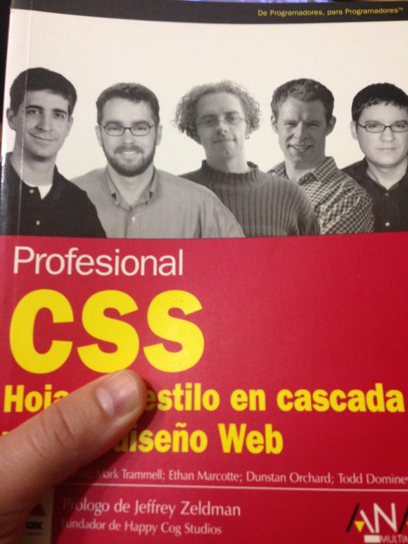 Portada del libro Profesional CSS, Hojas de estilo en cascada para el diseño Web